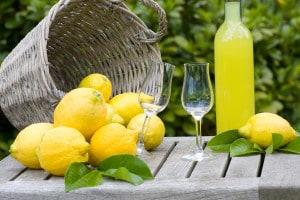 Summer, garden party with limoncello